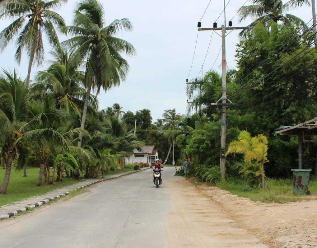 Thailand Roller